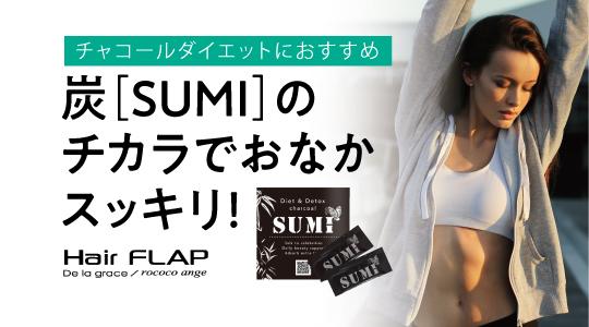20210305_flap_sumi_01