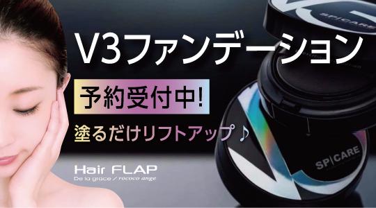 flapv3_bn_01