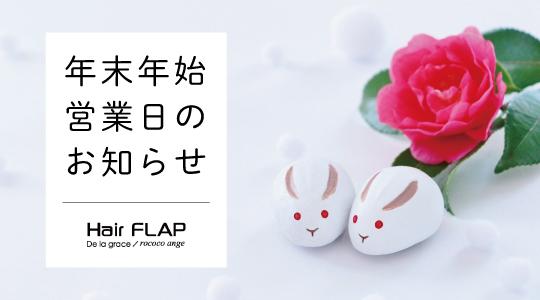 flap_bn_01